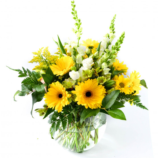 Cheerful Wishes