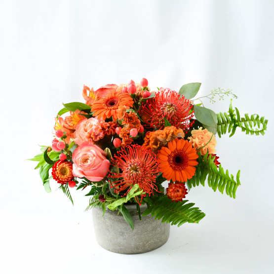 In House Collection- Orange Antique