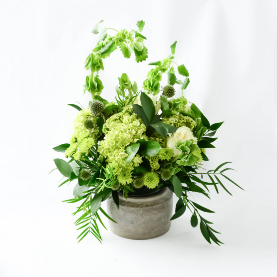 In House Collection- Green Goddess